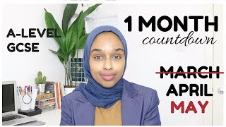 GCSE/ALEVELS 2019 | ONE MONTH COUNTDOWN + How To Study Last Minute?