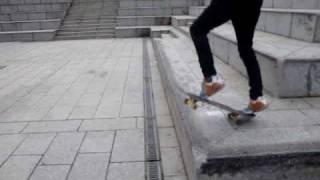 bercy gap skate bibou
