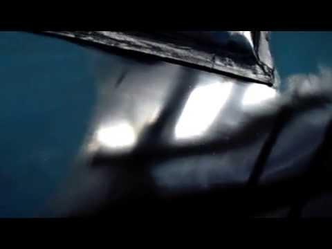 Best Yachts Shipyard / Painting Dauntless