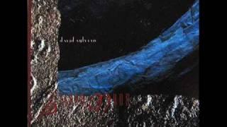 David Sylvian --  Silver Moon