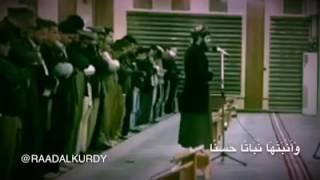 \ Raad Muhammed El Kürdi \  Ali İmran Suresi 37. Ayet Maşaallah Güzel Okuyor
