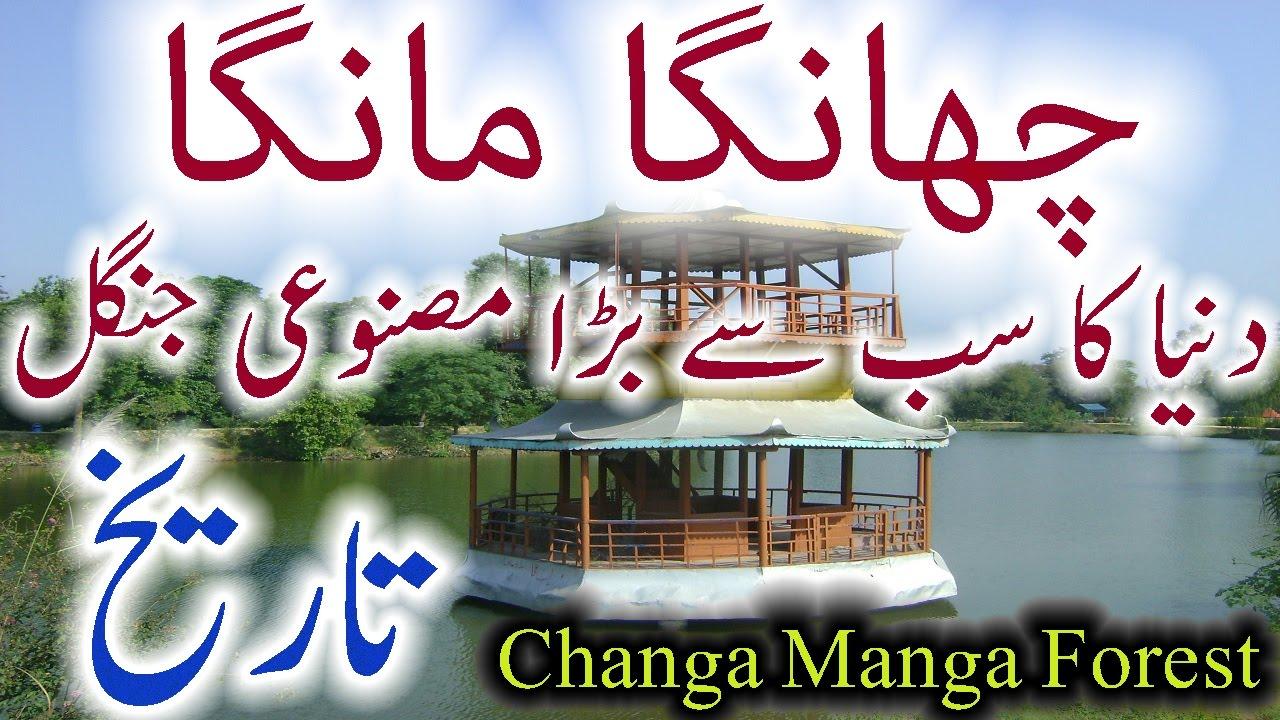Changa manga