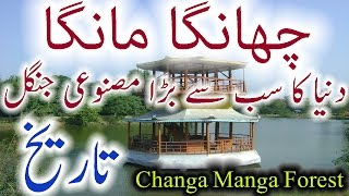 Changa Manga History In Urdu Forest Changa Manga Ka Jungle Sair