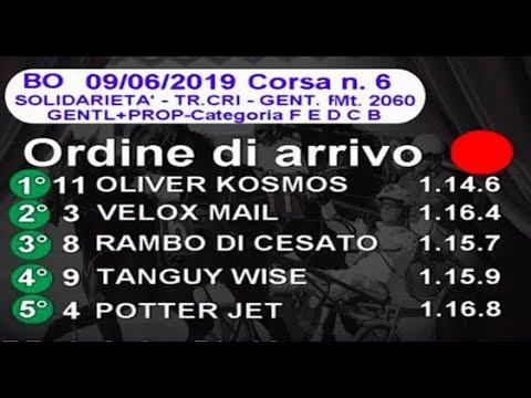2019 06 09   Corsa 6   Metri 1660   Premio Solidarietà Trofeo CRI