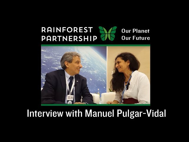 Our Planet. Our Future. - Interview with Manuel Pulgar-Vidal (COP23)