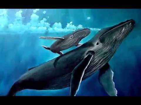 ballena azul - photo #29