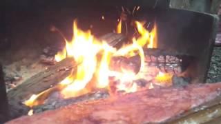 Wild Sockeye Campfire