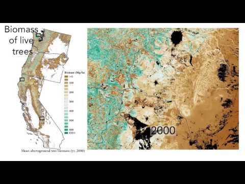 Landsat Science Team Final Presentation