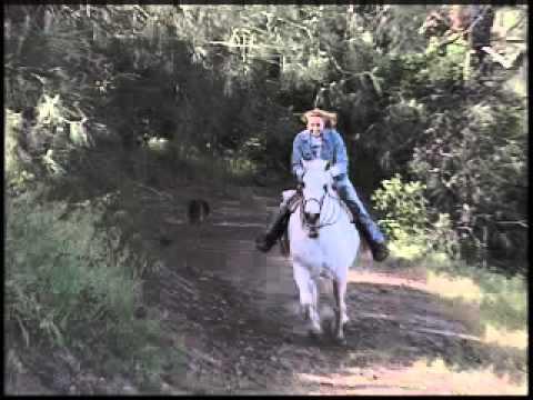 Bo Derek Speaks Against Horse Slaughter