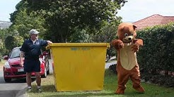 Skip bin hire Brisbane placement