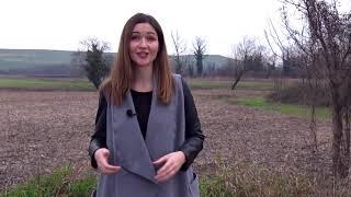 Agrokultura 22. prosinca 2019.