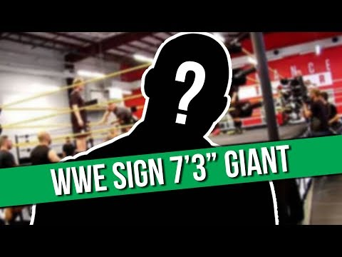 "WWE Sign 7'3"" Giant 