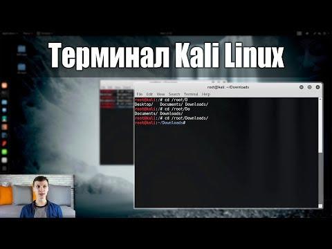 Terminal в Kali Linux - Как пользоваться? | Путь хакера | UnderMind