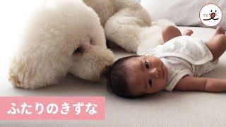 via Instagram@mozumami https://www.instagram.com/mozumami/ iOSアプ...