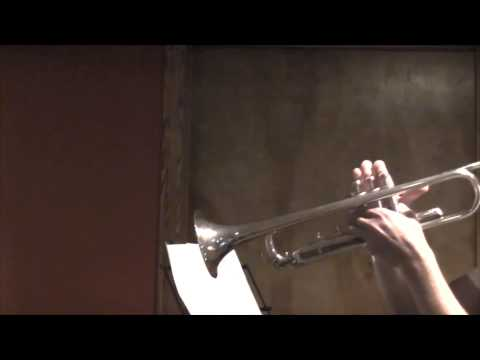 The Weeknd-The Hills (Trumpet Cover by Carter Miller)