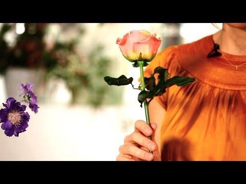 How to Make Roses Last Longer   Wedding Flowers