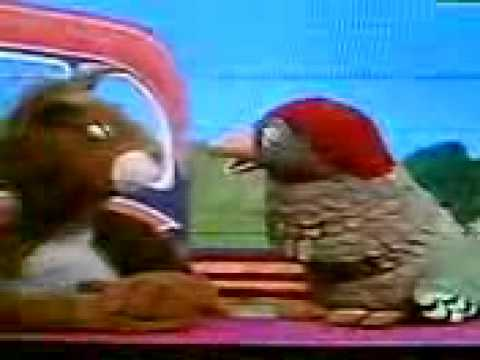 Y Bird And Poppy YouTube