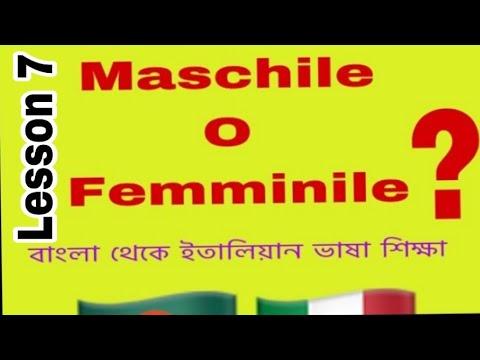 Bangla to Italian language 9th lessons (maschile o femminile)