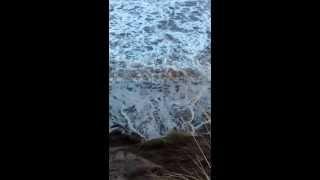 Montrose - Dune Bashing