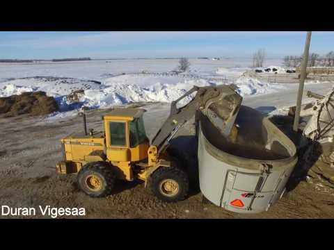 Winter day on North Dakota Dairy