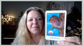 Your Daily Focus for April 25, 2019 through Tarot, Numerology and Astrology