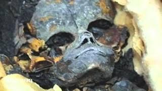 Extraterrestrial Mummy Found In Egypt 2012 HD