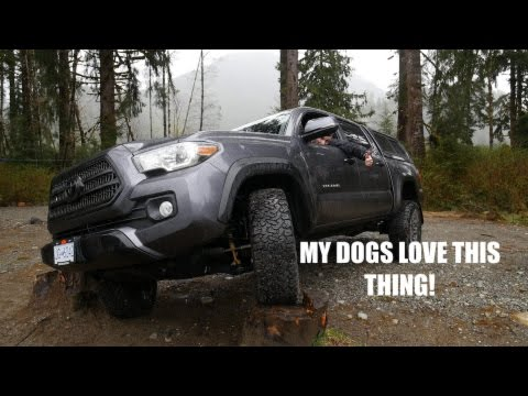 a Mod for my Dogs! Leer 100 XR | 2017 Tacoma TRD OffRoad Build