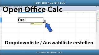 Auswahlliste /  Dropdownliste erstellen (Open Office Calc)