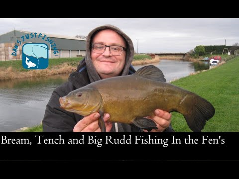 Bream And Tench Fishing On The Fens, Surprise Big Rudd!