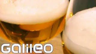 Wer braut das beste Bier der Welt?   Galileo