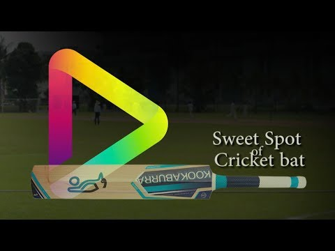 The Sweet Spot of a Cricket Bat