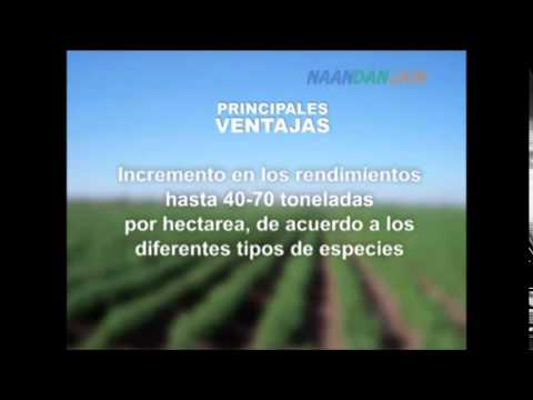 Sistema de riego irristand para papa en Bolivia thumbnail