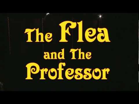 The Flea and the Professor video trailer