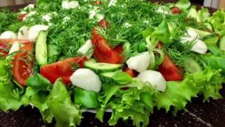 Как приготовить салат с моцареллой