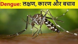 ये लक्षण नजर आये तो समझो डेंगू है | Dengue Fever Symptoms| Dengue Prevention & Cure
