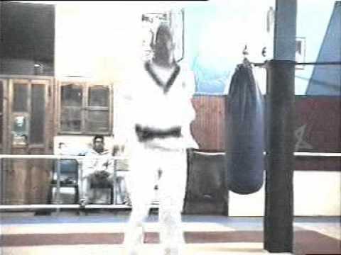 driss salek taekwondo part 1