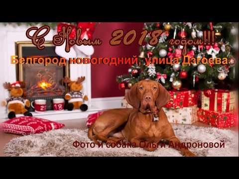 Белгород новогодний 2018 улица Дзгоева