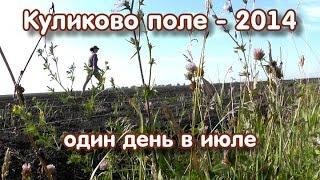 Куликово поле - 2014: один день в июле