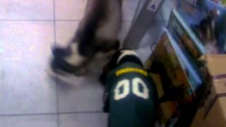 Nuestros cachorros jugando muy contentos en tienda +KOTA Prado Norte.
