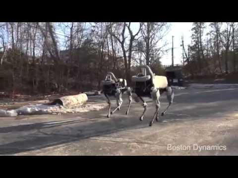 Spot Bostan Dynamics Robot   YouTube