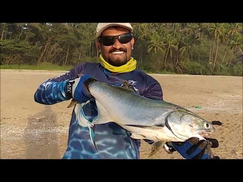 """ Quest for Threadfin salmon "" Sport fishing in Kannur 