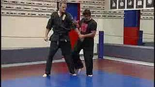 joint locks 1 arm bars for your martial arts curriculum