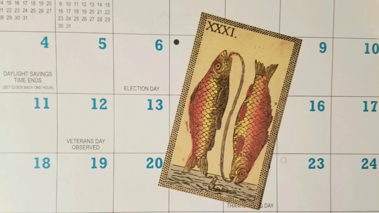Чего нельзя в ноябрьское полнолуние (23 ноября) – рыбам не стоит участвовать в важных встречах, конференциях и переговорах.
