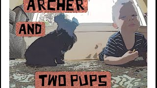 Archer & Two Pups