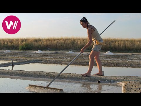 Ile de Ré - Land of the White Gold | What's cookin'