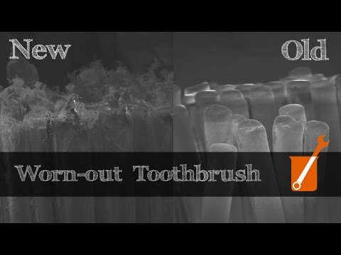 How toothbrushes work at an electron-microscopic level