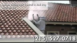 Pest Control Service, Bed Bugs in Souderton PA 18964