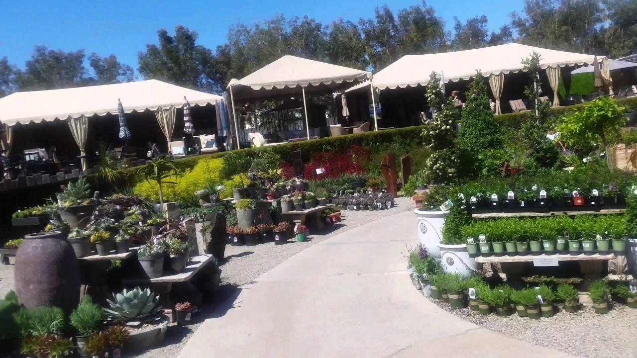 A Moment At Rogers Garden Newport Beach