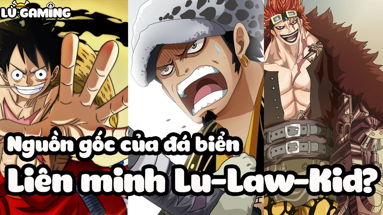 Liên Minh Đồng Nát Luffy – Law – Kid? Xuất Xứ Của Hải Lâu Thạch | Bản Tin One Piece #1