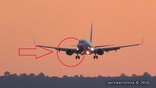 [FULL HD] Germania 737 BIRD SUCKED INTO ENGINE! Palma de Mallorca Airport